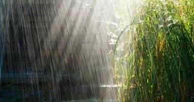 Ploi și vijelii în toată țara, până sâmbătă dimineață